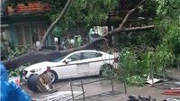 """""""Đám mây đối lưu"""" quật tơi bời cây cối, nhà cửa, xe cộ ở Hà Nội"""