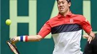 Halle Open: Nishikori vào Tứ kết, thách thứ Federer