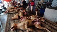 Báo Mỹ săm soi 'lễ hội thịt chó' tai tiếng nhất Trung Quốc