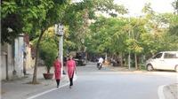 Ngắm phố Trịnh Công Sơn ở Hà Nội