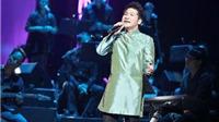 Ca sĩ Trọng Tấn 'liều mình' làm MV Khúc hát sông quê