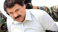 VIDEO: 'Bố già' ma túy Mexico, Joaquin Guzman vượt ngục bằng cách nào?