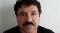 Treo thưởng 5 triệu USD bắt trùm ma túy khét tiếng El Chapo