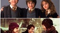 Harry Potter và tình bạn đời người