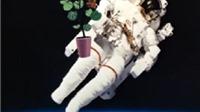 Các nhà du hành lần đầu tiên nếm thử rau trồng trên trạm vũ trụ ISS