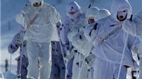 Nga rầm rộ tập trận tại Bắc Cực nhằm mục tiêu gì?