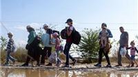 Trung Đông đang hiểu lầm việc Đức 'mở cửa' cho người di cư