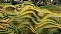 Đến Hà Giang ngắm ruộng bậc thang và dự lễ hội cúng thần rừng