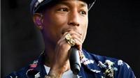 Biểu tình phản đối buổi hoà nhạc của Pharrell Williams ở Nam Phi
