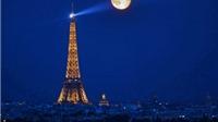 Du khách có thể gắn tên trên tháp Eiffel, biến tháp thành cây xanh chỉ với 10 USD