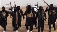 Sốc: Mỹ nghe lén được 'cuộc ăn mừng' của IS sau khi 'làm rơi máy bay Nga'