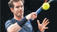 Andy Murray bận rộn với Davis Cup và ATP World Tour Finals