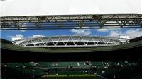 GÓC NHÌN: Điều tra tennis được thực hiện bí mật hay chưa hiệu quả?