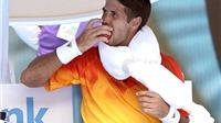 Các tay vợt uống nhiều nước tăng lực ở Australian Open