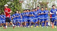 Tìm HLV trưởng đội tuyển Việt Nam: VFF còn rất ít thời gian