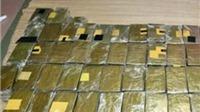 Puerto Rico phát hiện vụ buôn bán nửa tấn ma túy trị giá 11 triệu USD
