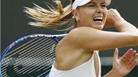 Maria Sharapova rút khỏi Indian Wells vì chấn thương
