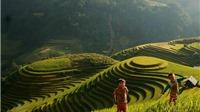 Video du lịch: Chợ phiên Mù Cang Chải có gì lạ?