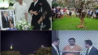 Remix Giải trí: Minh Béo không nhận tội; Mr Đàm 'xưng tội'; hoa anh đào héo có tội gì không?