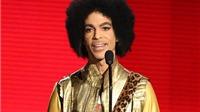 Prince đột tử khiến nhà xuất bản lao đao vì cuốn hồi ký dở dang