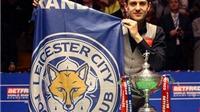 Tay cơ Leicester vô địch thế giới trong ngày đội nhà đăng quang Premier League