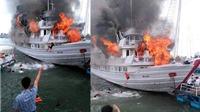 Remix Giải trí: Cháy tàu. Thú ngủ đêm trên Vịnh Hạ Long sẽ đi về đâu?
