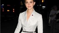 Emma Watson phủ nhận đã trốn thuế dù có tên trong Hồ sơ Panama