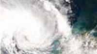 Lốc xoáy bất ngờ nhấn chìm 1 tàu cá, 7 thuyền nan ở Quảng Bình