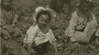 Những tấm ảnh nô lệ nhí làm thay đổi nước Mỹ