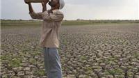 Nắng nóng khủng khiếp ở Ấn Độ còn hơn Hà Nội