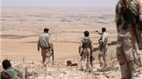 Được Mỹ hậu thuẫn, chiến binh Kurd tiến sát thành trì IS