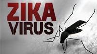 Mỹ thử nghiệm thành công vaccine phòng chống virus Zika trên động vật