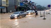 Hai người thương vong do mưa lớn ở thành phố Hạ Long