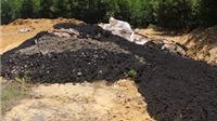 Phó thủ tướng yêu cầu: Khẩn trương kiểm tra việc chôn rác thải của Formosa