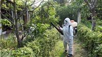 Thành phố Hồ Chí Minh chống dịch bệnh do vi rút Zika