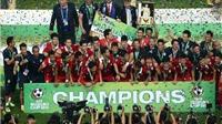 AFF Cup – Đỉnh cao của bóng đá Đông Nam Á