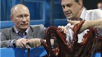 Báo lá cải Anh kể về 'những con bạch tuộc sát thủ' của Putin