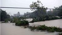 Các tỉnh ven biển từ Quảng Ngãi đến Ninh Thuận mưa to, lũ đang lên