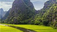 Ninh Bình tận dụng tối đa 'Kong: Skull Island' để quảng bá du lịch