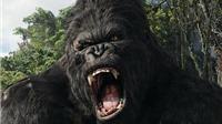King Kong ngày càng 'người' hơn trên màn bạc