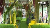 Xe buýt 'rừng xanh' độc đáo - trải nghiệm có 1 không 2