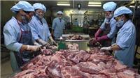Đã 'giải cứu' được hơn 200.000 tấn lợn trong dân
