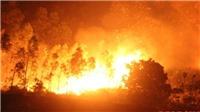 Hà Nội cháy rừng phòng hộ trong này nắng nóng lịch sử
