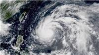 Tin mới nhất: Áp thấp nhiệt đới ở Biển Đông đã mạnh lên thành cơn bão số 3