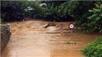 Mưa lũ và sạt lở đất làm 12 người chết, thiệt hại trên 20 tỷ đồng