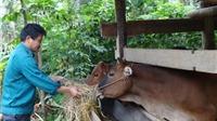 Bắc Giang huy động và sử dụng hiệu quả giúp nguồn lực để giảm nghèo bền vững