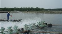 Những đổi thay trên vùng đầm phá Tam Giang: Khai thác tốt hệ đầm phá Tam Giang
