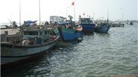Những đổi thay trên vùng đầm phá Tam Giang: Làng Rồng ơn Đảng (Bài 1)