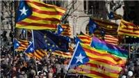 Nghị viện Catalonia chấp thuận giải thể cơ quan lập pháp mới, Thủ hiến bỏ trốn ra nước ngài