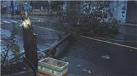 VIDEO: Tâm bão số 12 mạnh nhất năm 'quần thảo' Phú Yên - Khánh Hòa